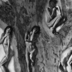 The Naked Tree - selfportrait(s)