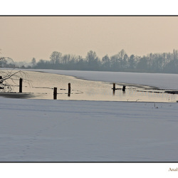 Reeuwijkse plassen II