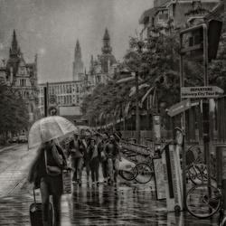 Larmes aux Anvers