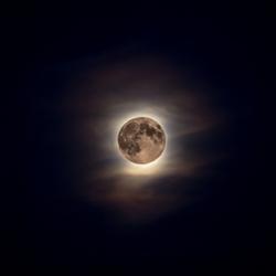 Maan bij avondschemer