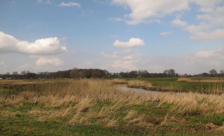 Oude Kene - De omgeving van Hoogeveen en Fluitenberg is een vrij nieuw natuur gebied gemaakt.<br /> En daar voor een tijdje terug rond gelopen.<br />