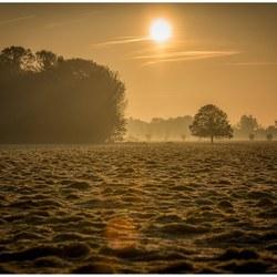 Early morning shot