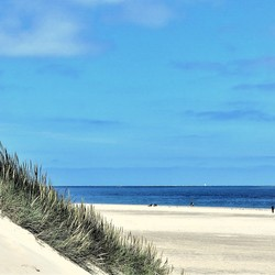 Strand Texel (paal 32)