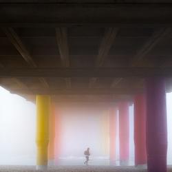 Zeevlam onder de pier van Scheveningen