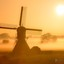 Foggy windmill sunrise