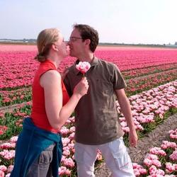Liefde in de bollenvelden