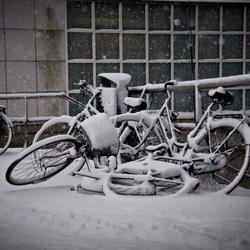 Vergeten fietsen
