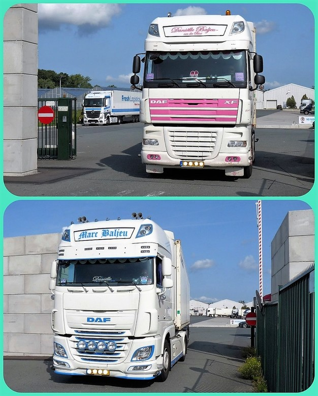 collage DAF XF 105 en DAF XF euro 6 28aug 2017 | Overig foto