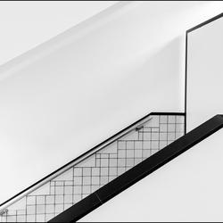 lijnen in zwart wit