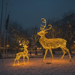 Winter in Zwolle