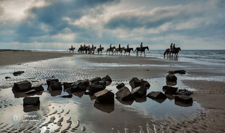 Strandrit - Een rit per paard over het strand van Renesse