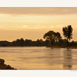 Ochtend aan de IJssel