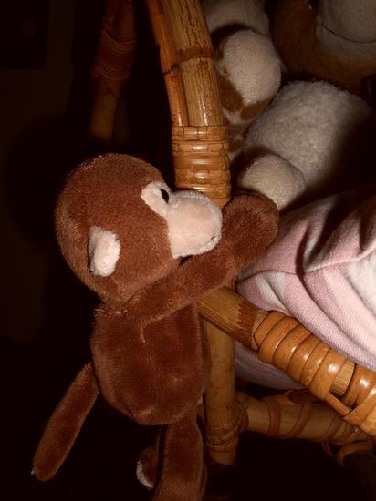 Aapje - En dan nu over van gewone dieren naar knuffeldieren.