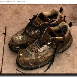 schoenen van Gogh