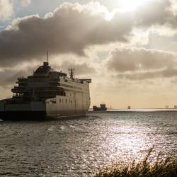 Pride of Rotterdam outward bound