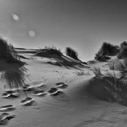 Duinen voetstappen BW.jpg