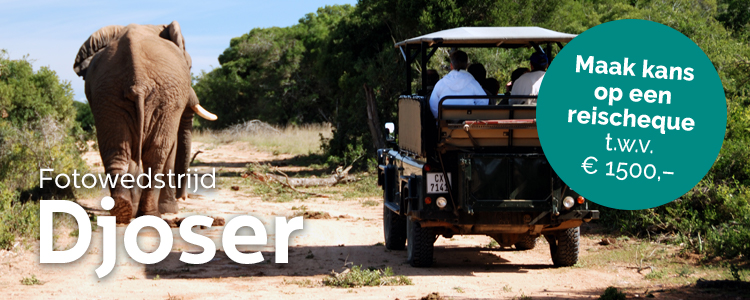 fotowedstrijd: Met oog voor Afrika