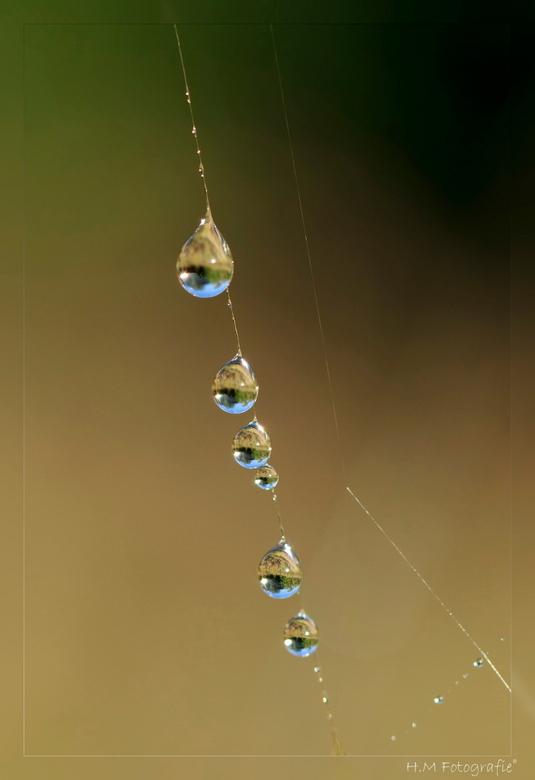 """druppies - Weer even een foto van druppels, kon het niet laten <img  src=""""/images/smileys/wilt.png""""/> Heb hier gekozen voor de scherpte in de reflecti"""