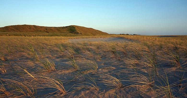Imagined me out here in the Sahara . . . .  - CAMPERDUIN - Hondsbossche- en Pettemer Zeewering.<br /> Voorheen was hier een asfaltdijk waarop je kon