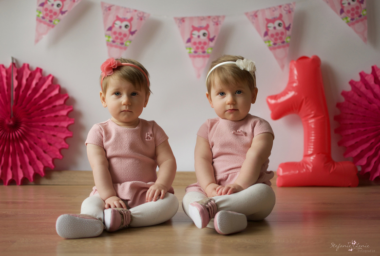 The twins -