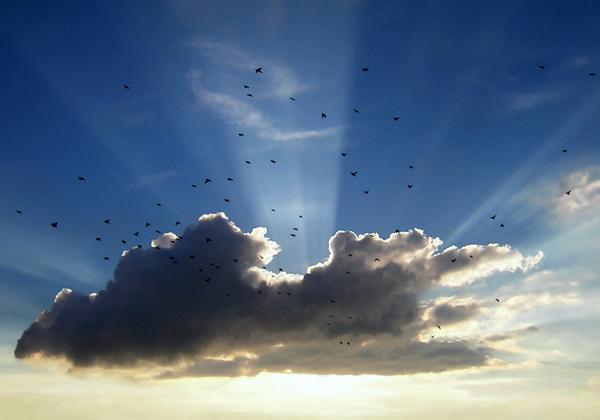 Achter de wolken - Deze heb ik een tijdje geleden gemaakt vanaf het balkon. Tijdens het fotograferen kwam er ineens een groep vogels voorbij vliegen,