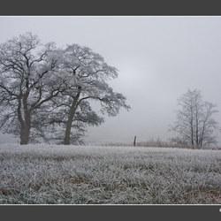 Het wintert door