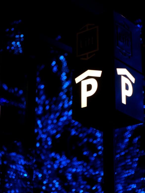Blauw boom - In het centrum van Almere staan soms blauw verlichte bomen,