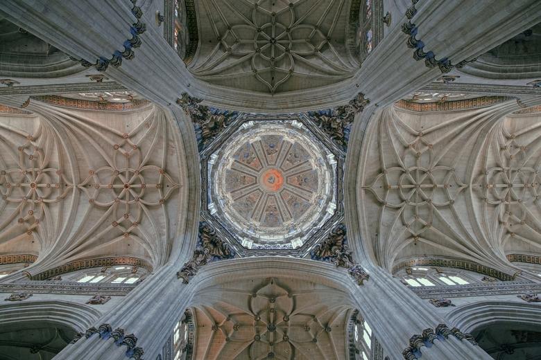 Spanje 115 - Het plafond van de kathedraal van Salamanca.