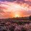 Kleurrijke natuur bij zonsopkomst