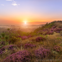 Sunrise on the dunes of Holland, by Costas Ganasos Photography©