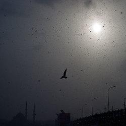 Sneeuwbui in Istanbul