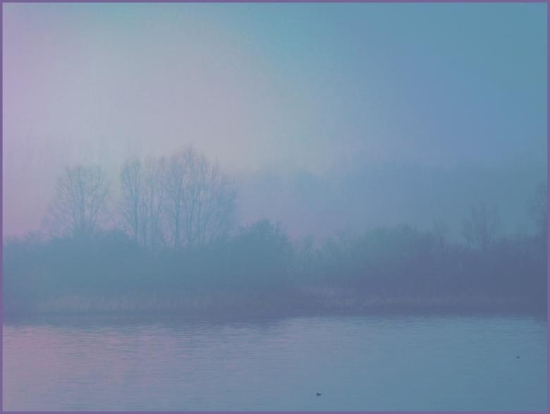Misty.... - ....prachtig in de natuur..