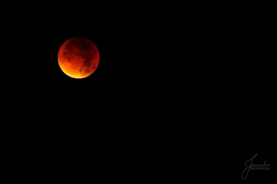under the bloody moon