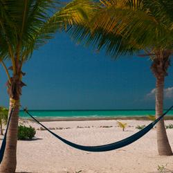 Dromen aan het strand