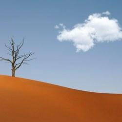 Minimal : In the Desert....