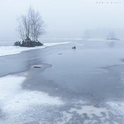 Winters Mastbos