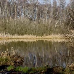 DSC_0422  Reflectie.