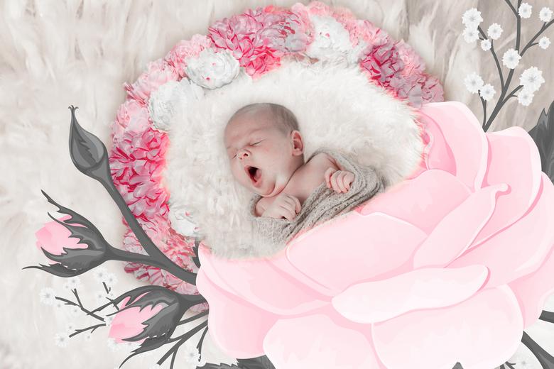 Rosalie in de roos - Rosalie in de roos.<br /> Eerst een droomfoto gemaakt in photoshop en daarna bewerkt met mooie presets van Zoom voor gevorderden