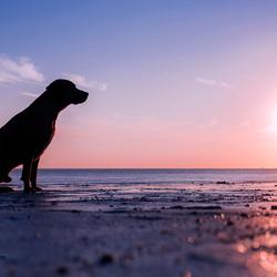 Enjoying the sunset!