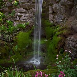 Zoomdag Botanische tuin Utrecht 2