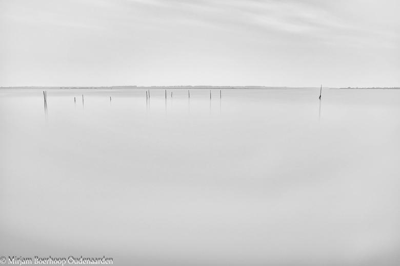 Palen in een meer -
