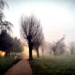 Dorpspark Hees