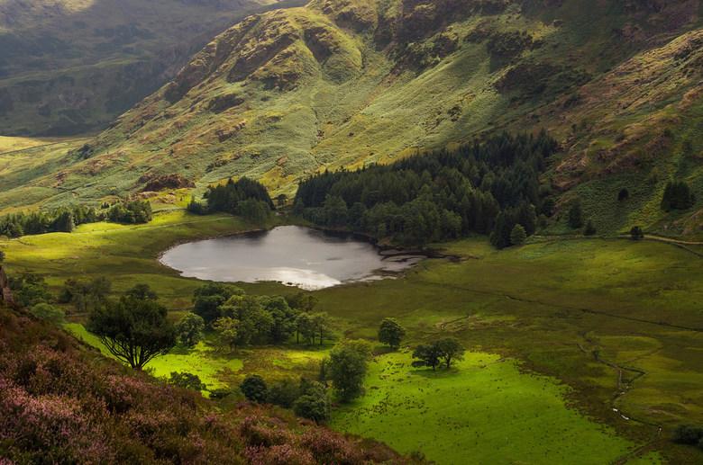 Blea Tarn - Blea Tarn in Little Langdale in the Lake District.<br /> Pentax K-5 + Carl Zeiss Planar T* 85/1.4 ZK