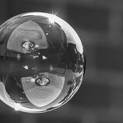 Bubble go ape
