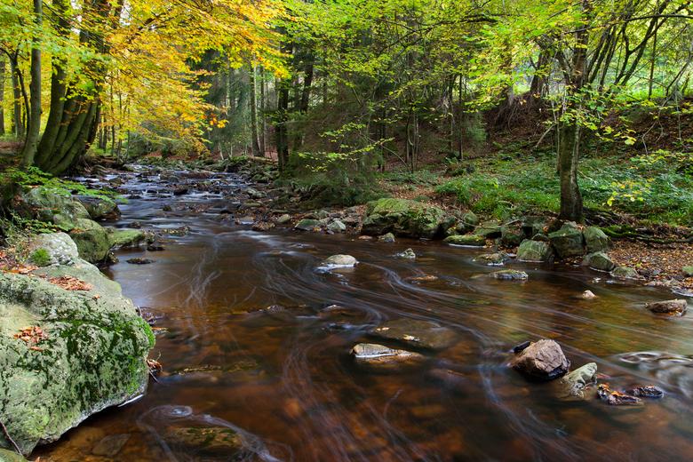 La Hoegne - La Hoegne tijdens de herfst.