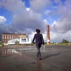 Op weg naar de suikerfabriek.jpg