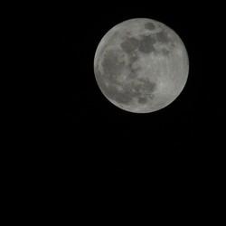 Blauwe Maan