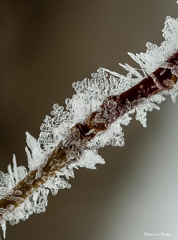 Mozaiek van ijs - Weer aan het oefenen geweest met de macrolens. Niet makkelijk, wel heel leuk. Zo leuk zelfs dat ik de kou zelf niet voel.