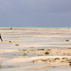 Zanzibar, activiteit op het strand
