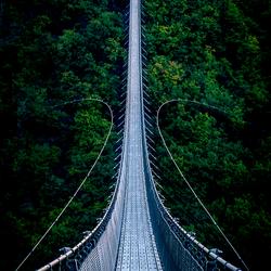 De Geierlay voetgangershangbrug in Duitsland